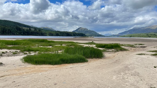 Loch Laggan beach East  and surrounds