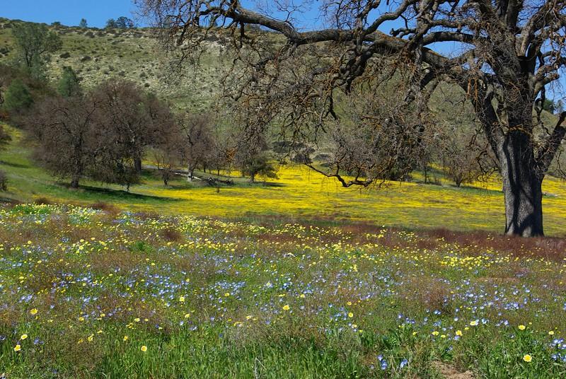 Shell Creek Road, San Luis Obispo County