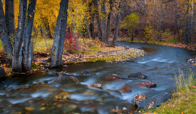 Fall Idaho-15.jpg