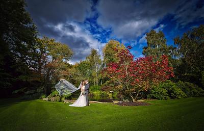 Alex and Kelly's Wedding