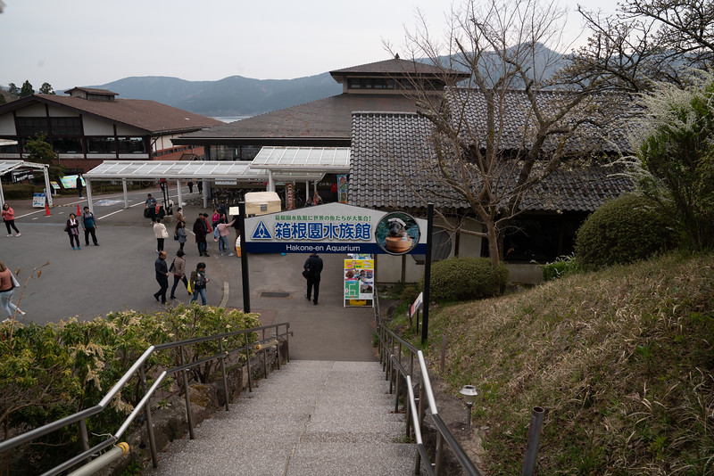 20190411-JapanTour-5518.jpg