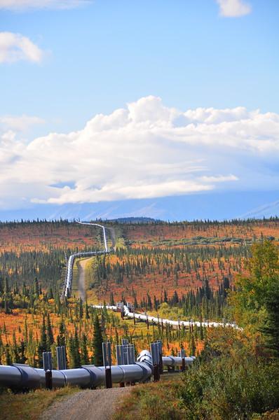 Alaska Pipeline in fall.  Near Delta Junction, Alaska.