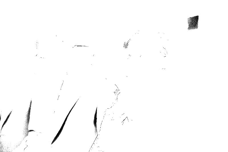 DSC05623.png