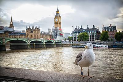 2017 [ UK ] London