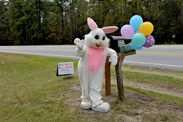 Hofwyl-Broadfield Plantation Easter Events