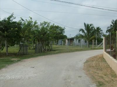 South & Central America