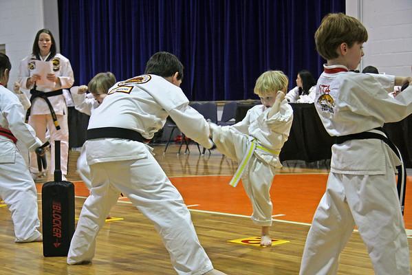 Tae Kwon Do - Testing 1-31-2009