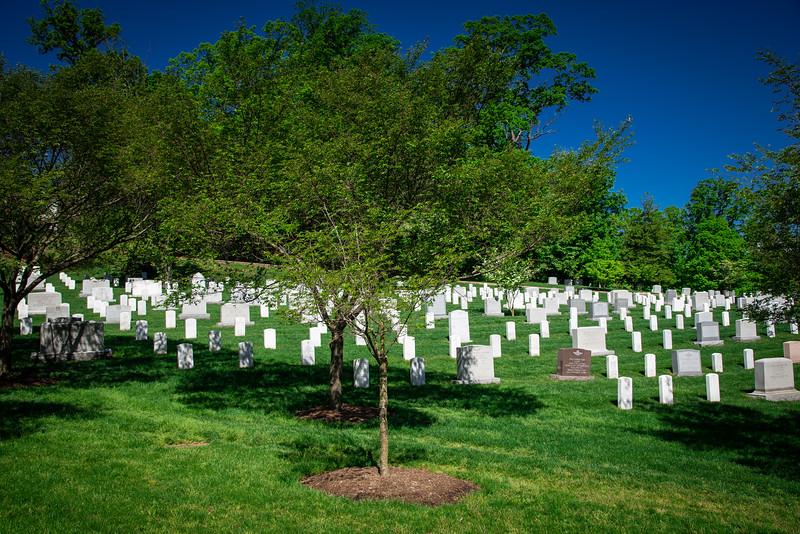 Arlington-113.jpg