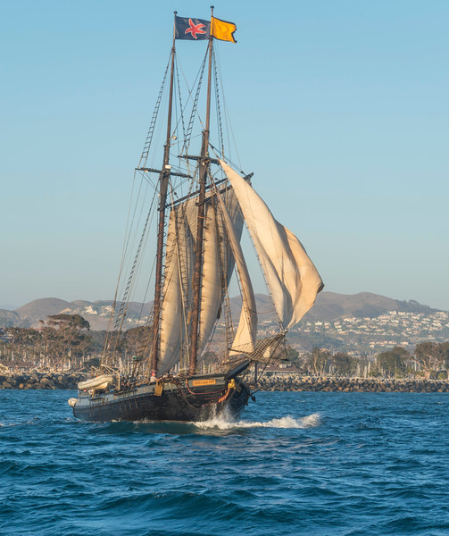 Tall Ships_Spirit of Dana Point-3.jpg