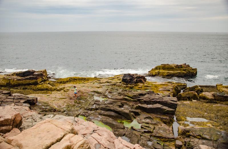 Acadia Nat'l Park-Terry's - July 2017-146-Edit.jpg