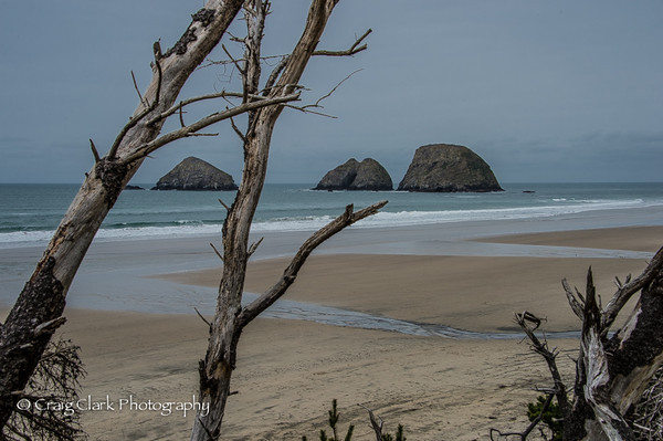 Oregon North Coast Feb 2014