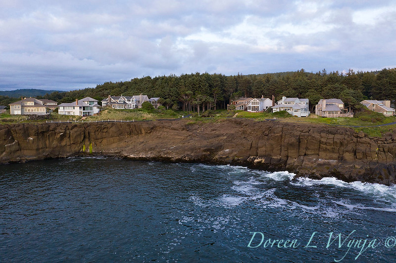Whale Cove from the sky_0136.jpg