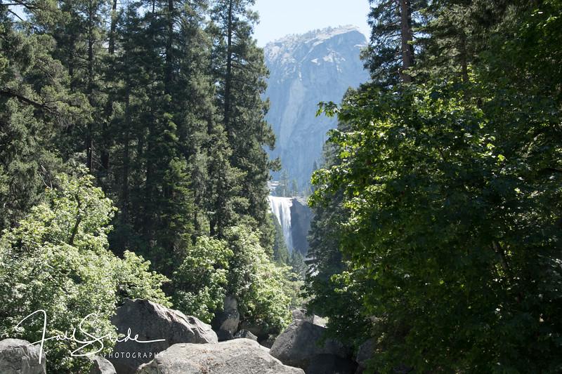 Yosemite 2018 -87.jpg
