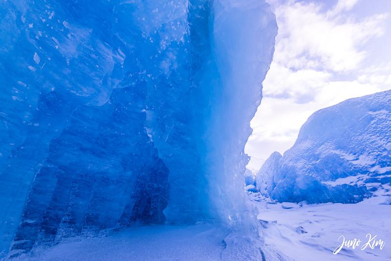 2020-01-17_Alaska Wild Guides-6102659-Juno Kim.jpg