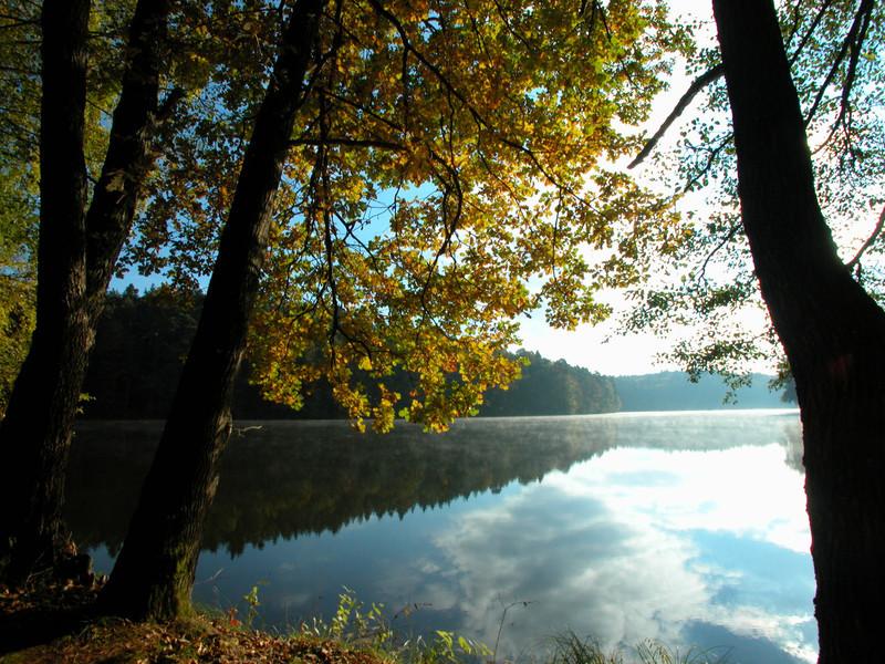 Postkarten_Leporello Herbstlaub Ufer Seeuferweg See