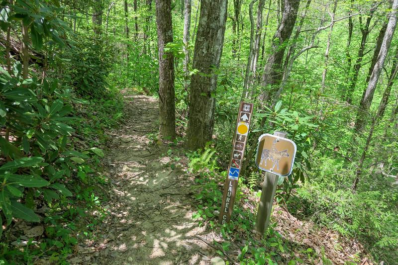 Laurel Creek Trail -- 3,050'