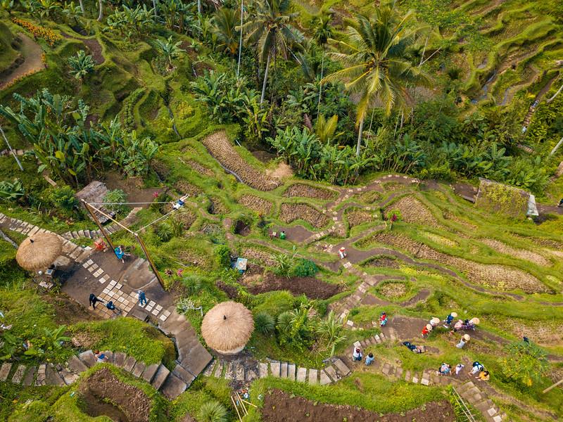 Bali (169).jpg