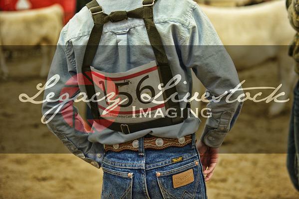Nebraska Cattlemen's Classic 2013