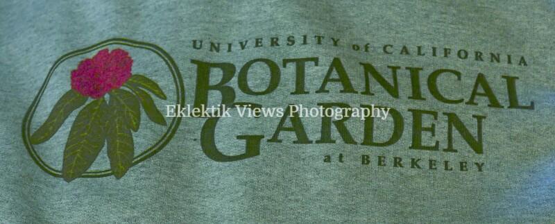 UC Berkeley Botanical Garden and Tilden Park