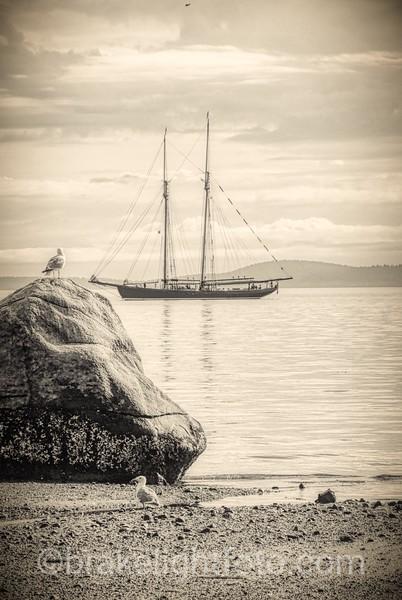 Cordova Bay