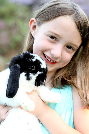 Stephens Easter Mini
