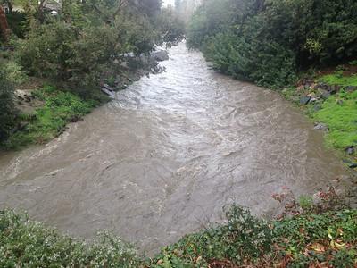 01-20-17 LW Aliso Creek Rained