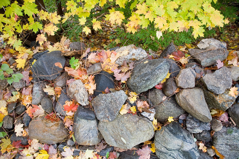 Colorful image of a stone fence in the autumn with fallen leaves.