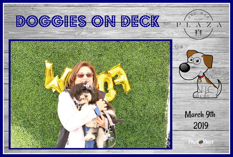 Doggys on Deck25.jpg