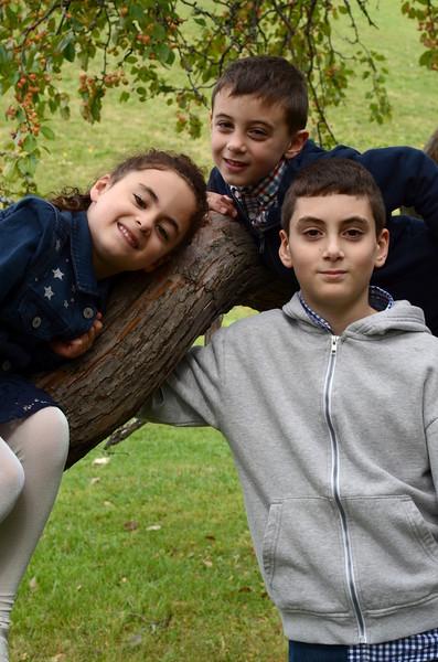 sibs in tree.JPG