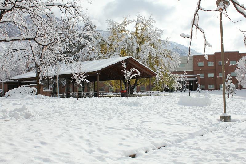 Snowy_Morning_11_10_2012_3318.JPG