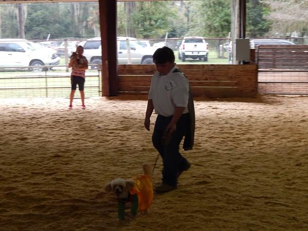 Hamilton County 4-H Dog Show