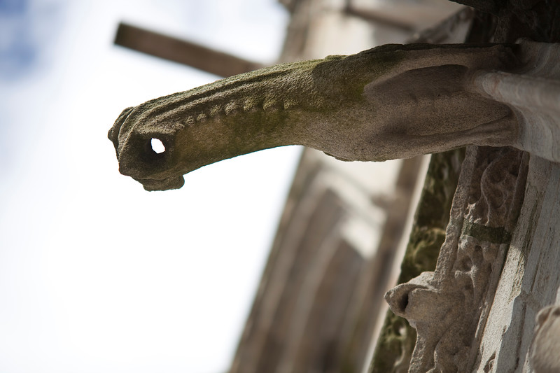 Gargoyle, Cathedral of Quimper, departament of Finistere, region of Brittany, France