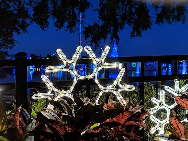 12-Sea World Christmas Eve