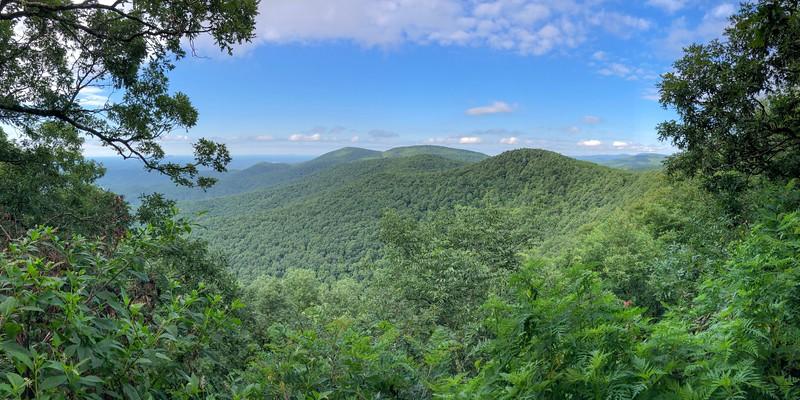 AT: Springer Mountain to Woody Gap July 2018