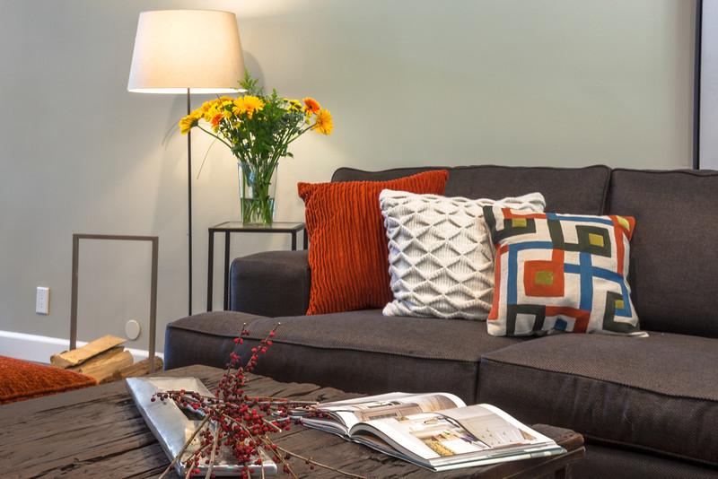 Living_Room_Detail_MG_3644.jpg