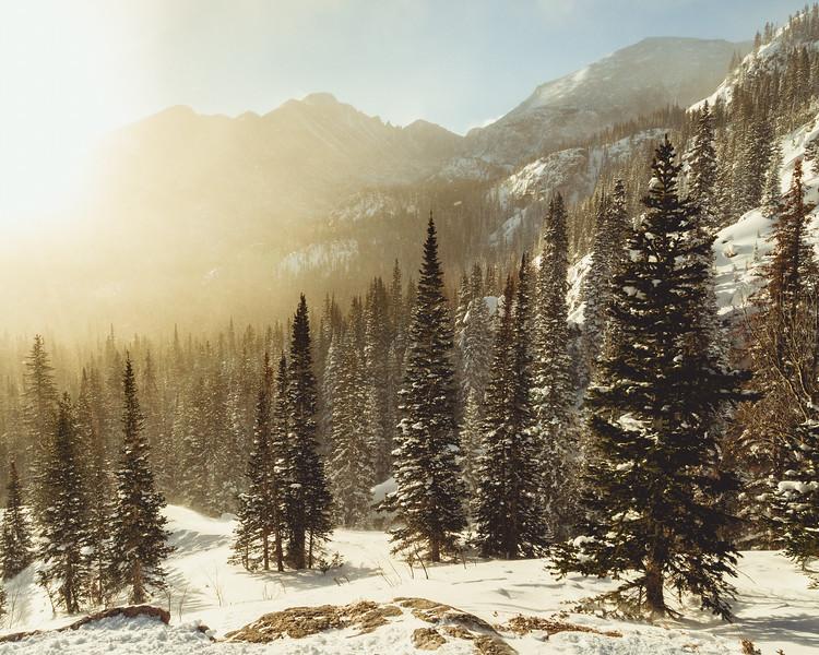 Dream Lake Trail Golden Storm RMNP-1.jpg