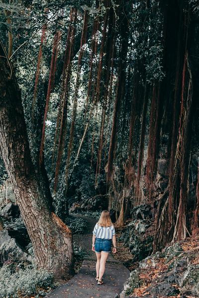 Hawaii20-53.jpg