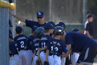 Rays Little League Baseball