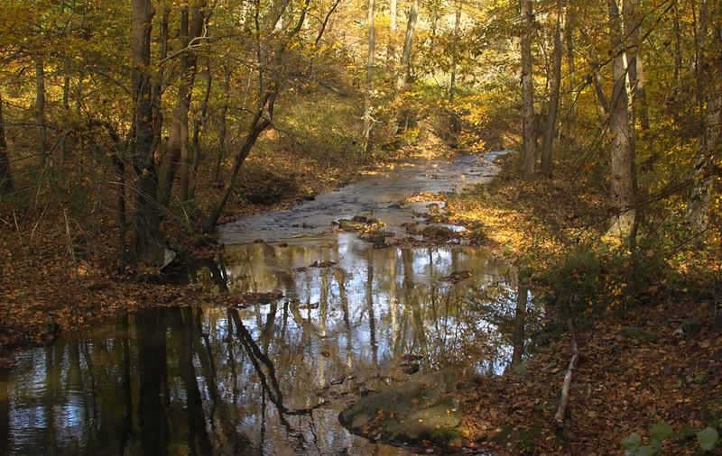 fall_reflections_satish_14_20141019_1898631271.jpg