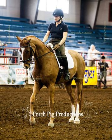 Ozark Dressage Society Seminar Horse Fest 2014