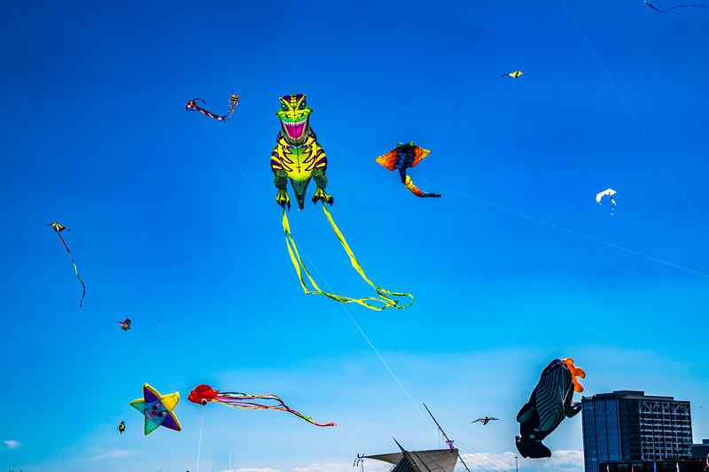 milwaukee-kite-festival_47947162841_o.jpg