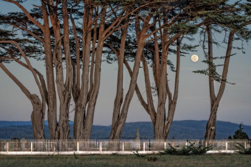 Twilight & Moonlight, Mendocino County, California