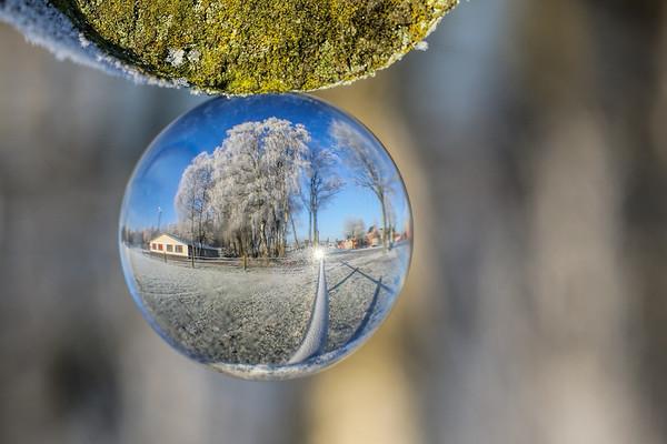 Winter (30/12/16)