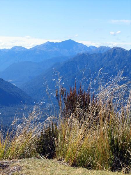 Mt Tuhua (13).jpg