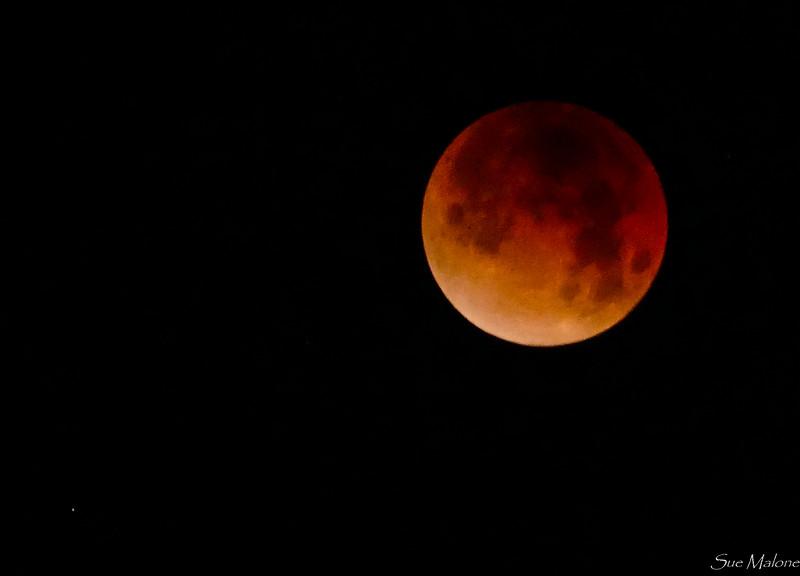 Eclipse at Catalina (4 of 25).jpg