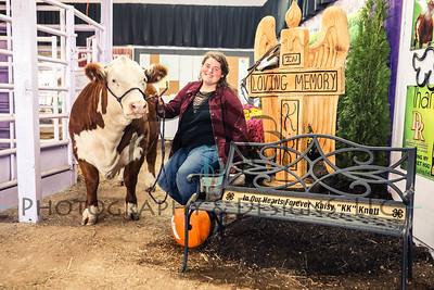 Aubry Knott | 2019 County Fair Mini