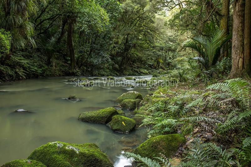 Hatea River near Whangarei  Falls