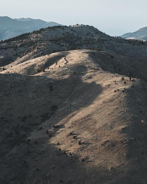Lookout Mtn Contrast Gold-1.jpg