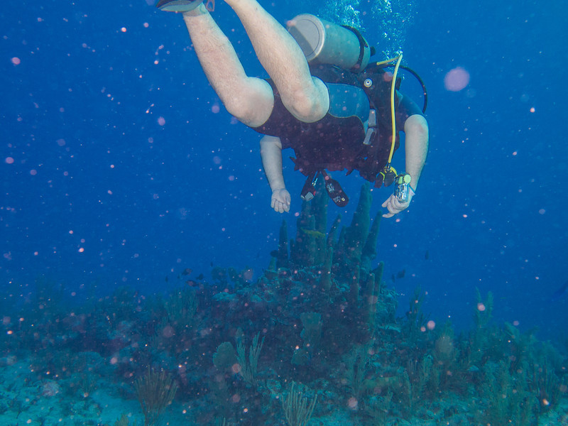Tulum Trip - Diving 20130405-17-40 _405262204.jpg
