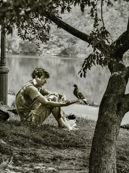 central park boy and pidgen.jpg